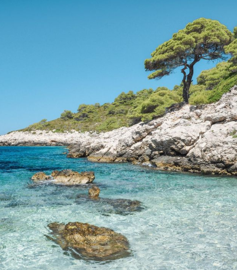 Seafront Plot in Dubrovnik , 115539m2 4